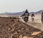 Honda Quest: True Adventure with the new 2020 Africa Twin!