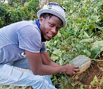 Bakwena's food security project bears fruit