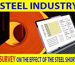 Steel industry:  ITAC survey on the effect of the steel shortages
